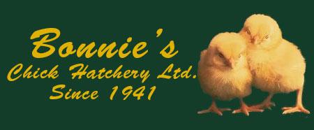 Bonnie's Chick Hatchery, Harrow, Windsor, Essex